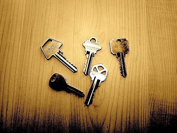 Goji Key